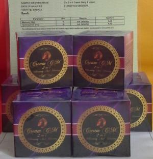CREAM PEMUTIH & GLOWING WAJAH 2IN1(SERTIFIKAT SUCOFINDO)NW PACKING 30G