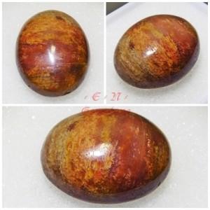 harga Batu Akik Pancawarna Mustika Fosil Kayu Cendana Bulu Macan BN501 Tokopedia.com