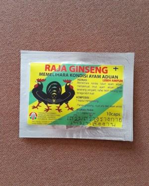 RAJA GINSENG - Memelihara Kondisi Ayam Aduan