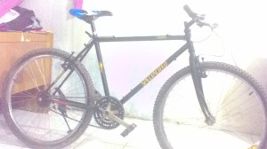 Sepeda Federal olahraga biasa