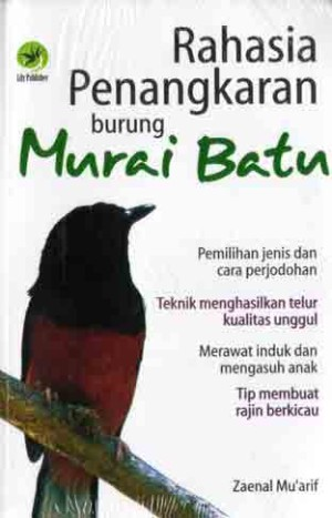 Rahasia Penangkaran Burung Murai Batu