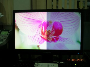 Pelindung LCD RYBEN 23-24 INCH