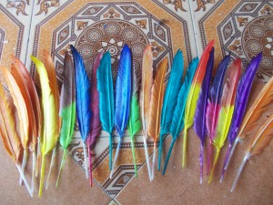 Bulu Angsa panjang 20-25 cm