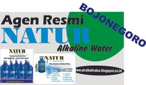 Air Alkali Natur, Terapi Penyakit, Asthma, Batu Ginjal