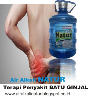 Air Alkali NATUR, Air Organik Pelancar Metabolisme tubuh