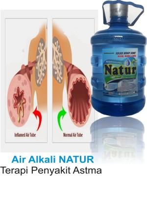 Air Alkali NATUR, Obat Asam Urat, Obat Segala Penyakit