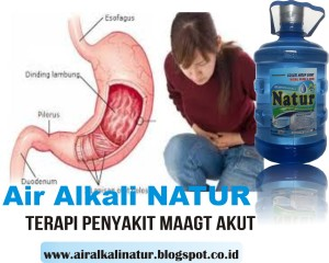 Air Alkali Natur, Obat Penyakit Dalam, 5 Liter