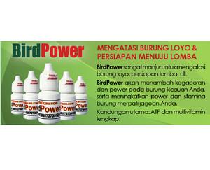 BirdPower