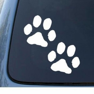 Cutting Sticker / Stiker Variasi