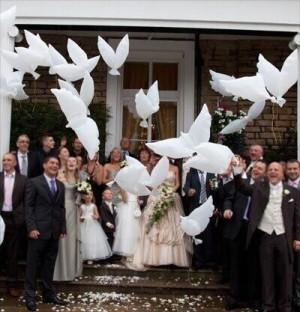 Balon burung merpati putih