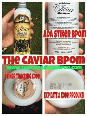 the caviar shampoo   pelebat rambut   shampoo kuda BPOM
