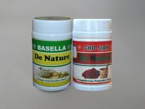 Obat Herbal Maag De Nature