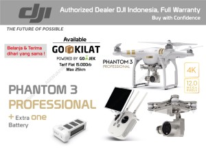 DJI Phantom 3 Professional + Extra Battery 4K/12MP fly up to 25 Mnts
