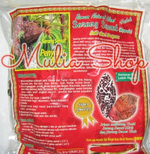 Sarang Semut Rebus Asli Papua 100 gram Fira Papua