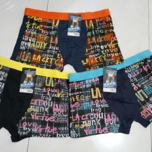 CD Pria, Boxer, Sempak, Pakaian Dalam, Underware, Celana Renang