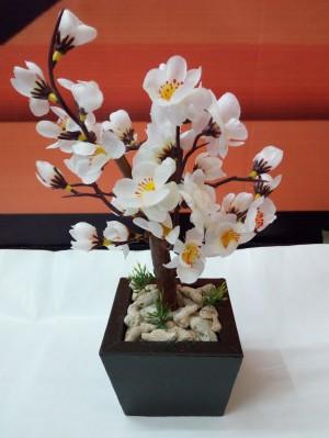 Bunga Sakura Mini Putih Pot Hitam