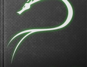 Kali Linux : 300% Attack !