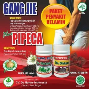 Obat Sipilis De Nature Gang jie dan Pipeca