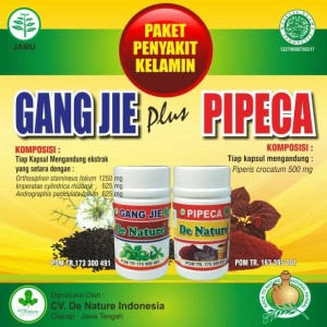 Obat Sipilis Herbal AMpuh Dari De Nature.