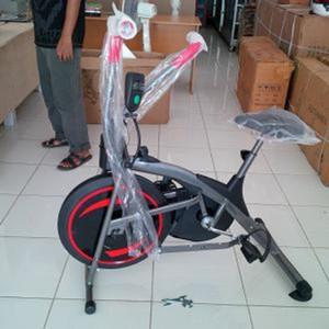 Sepeda fitness platinum bike