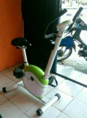 setatis bike id-420B magnetic