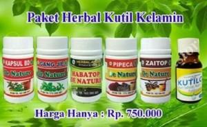 Obat Kutil Kelamin Herbal Paling Ampuh