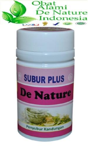 Obat penyubur kandungan herbal alami