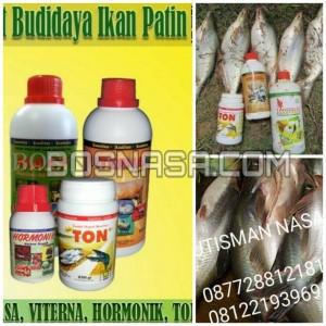 Paket Vitamin Budidaya Ikan Patin Terlaris