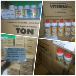 Paket Vitamin Budidaya Ikan Nila Termurah