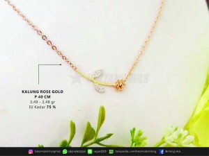kalung kdr 75%