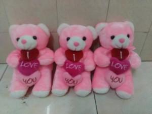 bear 3 love susun