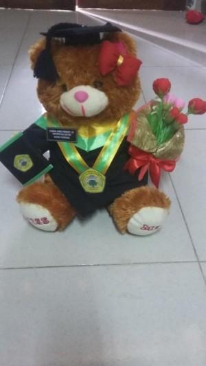 Boneka Wisuda Teddy Bear Coklat 32cm Dengan Buket Bunga