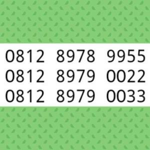 Nomor Cantik Simpati Double AA Perdana rapih 9955 0022 0033$IN_88