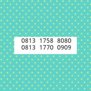 NomorCantik simPATi-Tsel-DoubleAB-0813 1758 8080 & 1770 0909-LK7-513
