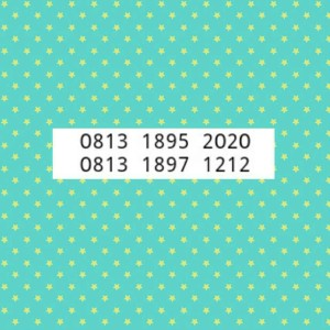 NomorCantik simPATi-Tsel-DoubleAB-0813 1895 2020 & 1897 1212-LK7-515