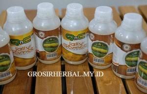Obat Herbal Untuk Penyakit Batu Empedu