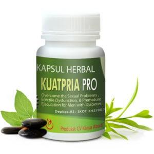 Obat Herbal Untuk Vitalitas Pria Penderita Diabetes | KP-Pro