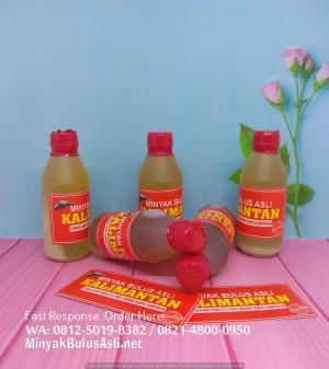 Minyak Bulus Asli 100 ml, Asli 100%, Kualitas Terbaik dan Terpercaya