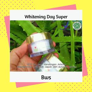 Shineskin Suncare Whitening Day Super/WDS krim siang spf 50 (merk bws)