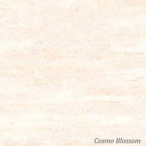 Granito Artile Cosmo Series 60x60 cm