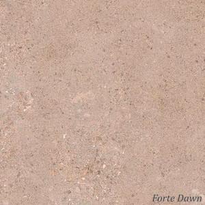 Granito Artile Forte Series 60x60 cm