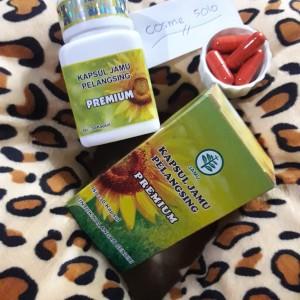 Kapsul Jamu Pelangsing/KJP PREMIUM/Pelangsing herbal (NON BOX)