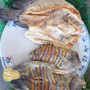 Jual Ikan Asin Jenis Ikan Batu Mix Kerapu Kakap Sunu Dll 1000 Gram Kab Parigi Moutong Oleh Oleh Sulawesitengah Tokopedia