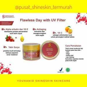 Shineskin suncare flawless day uv filter