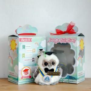 Promo Boneka Owl Wisuda Mini Small 15cm
