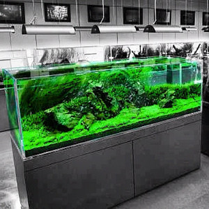 Jual Jasa Setting Design Dekor Aquarium Hias Aquascape 1 Meter Jakarta Pusat Aqua Design Juragan Tokopedia
