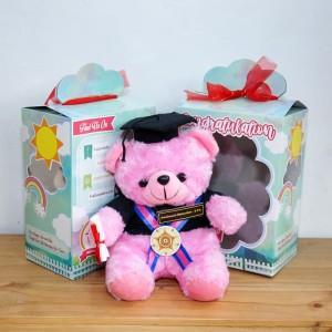 Teddy Bear Wisuda Pink Soft 25cm Kado Wisuda jogja Murah