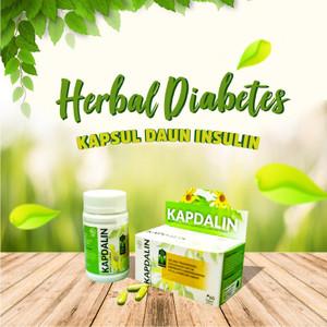 Obat Herbal Diabetes Kencing Manis NEW KAPDALIN Daun Insulin