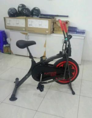 Sepeda Platinum Bike