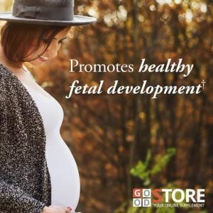 Jual Garden Of Life Mykind Organics Prenatal Multi 180 Vegan Tablets Kota Medan Mitra Bangunan Anda Tokopedia